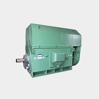 西玛YKK系列(710-1000)高压三相异步电动机